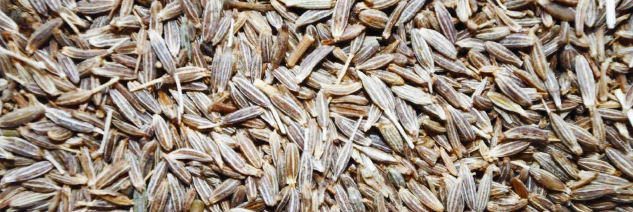 Cumin Water The one thing that can set your metabolism right