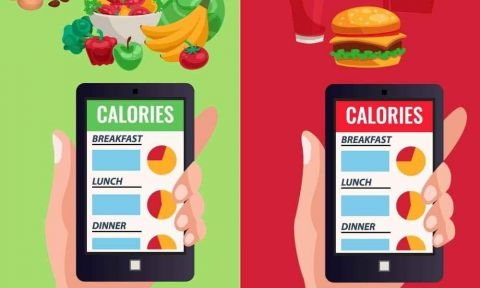 Fats And Calorie - How Much In A Day?