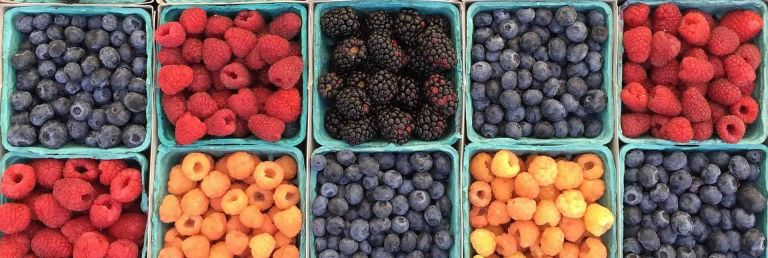 Tasty Berry Recipes For Weight Loss